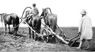 Рациональность в сельскохозяйственной практике белорусских помещиков XIX века
